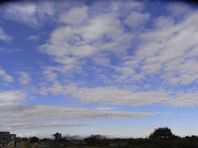 Cloud1118
