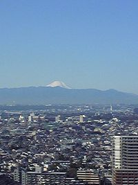 Fuji100124