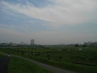 Futakogo8o713