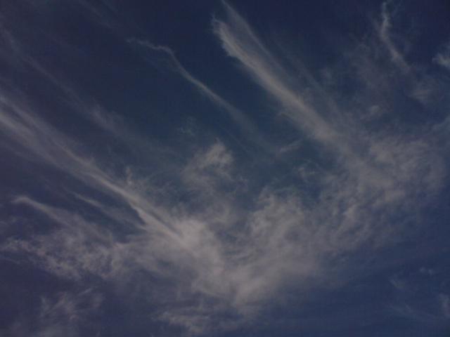 雲が踊っています